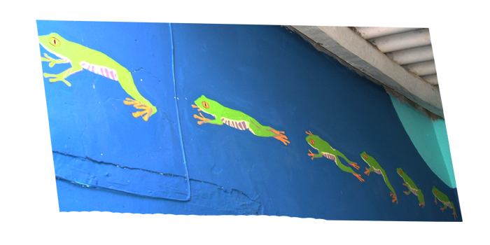 Mural of frogs jumping
